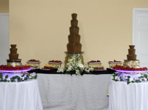 Chocolate Fountains 3